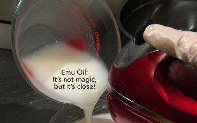 My Love of Emu Oil Started on Martha's Vineyard